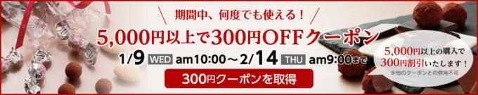 【期間限定】サロンドロワイヤル「300円OFF」割引クーポン
