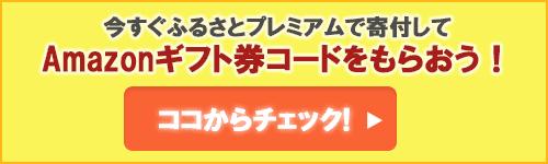 【期間限定】ふるさとプレミアム「1%〜6%OFF」Amazonギフト券コードプレゼントキャンペーン