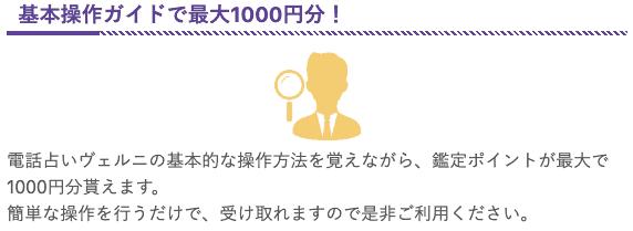 【基本操作ガイド限定】電話占いヴェルニ「最大1000円OFF」鑑定ポイント