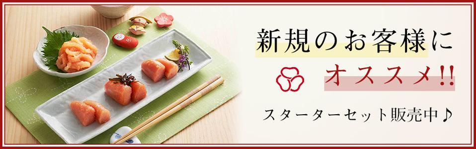 【新規限定】島本(明太子)「各種お得な」スターターセット