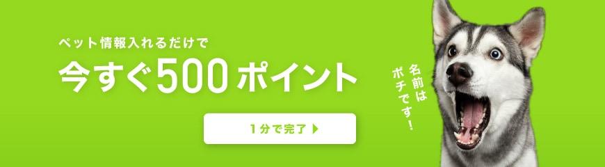 【ペット情報入力限定】ペットくすり「500円分」割引ポイント