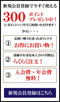【新規会員登録限定】和田珍味「300ポイント」プレゼントキャンペーン
